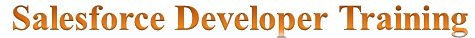 Advanced salesforce developer training