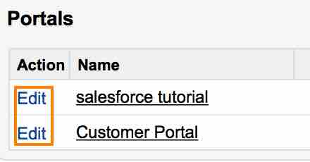 Customer Portal in salesforce